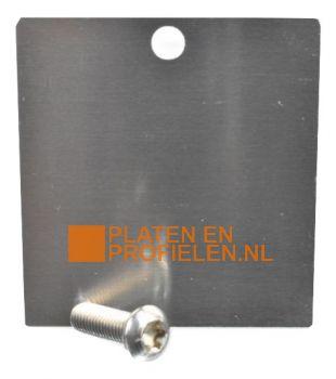 Eindschotje afdekprofiel 58 mm - Brute aluminium